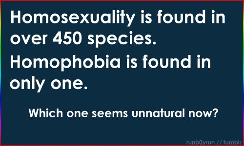 Homosexuality in nature